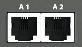 2 analog ports.jpg